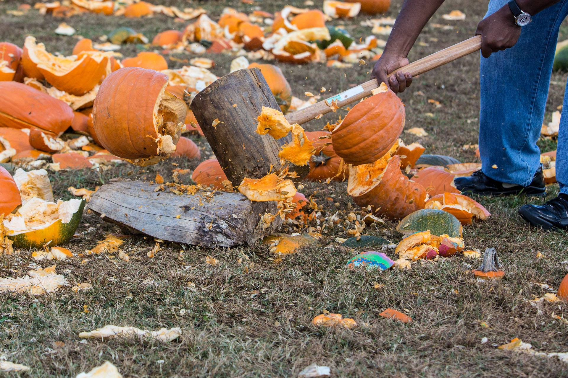 National Pumpkin Destruction Day At The Rock Ranch Family And Kids Of The Chattahoochee Valley