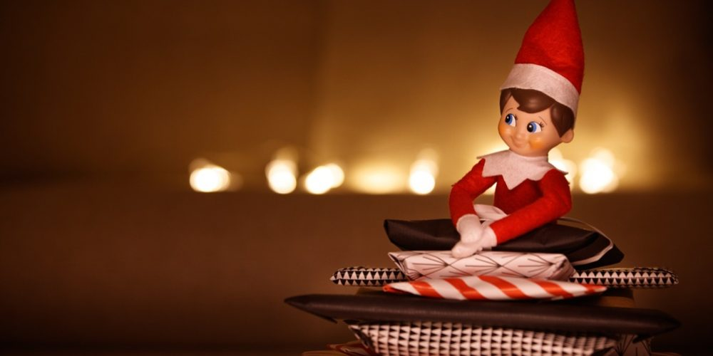 Do I want an Elf in My House?