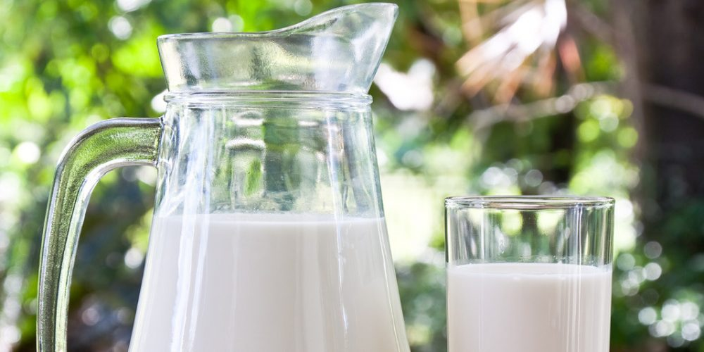 Differences Between Milks | Which Milk is Best For Your Child